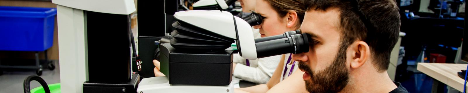 Neuroscience Institute Trainees Examine Samples Using High-Resolution Microscopes