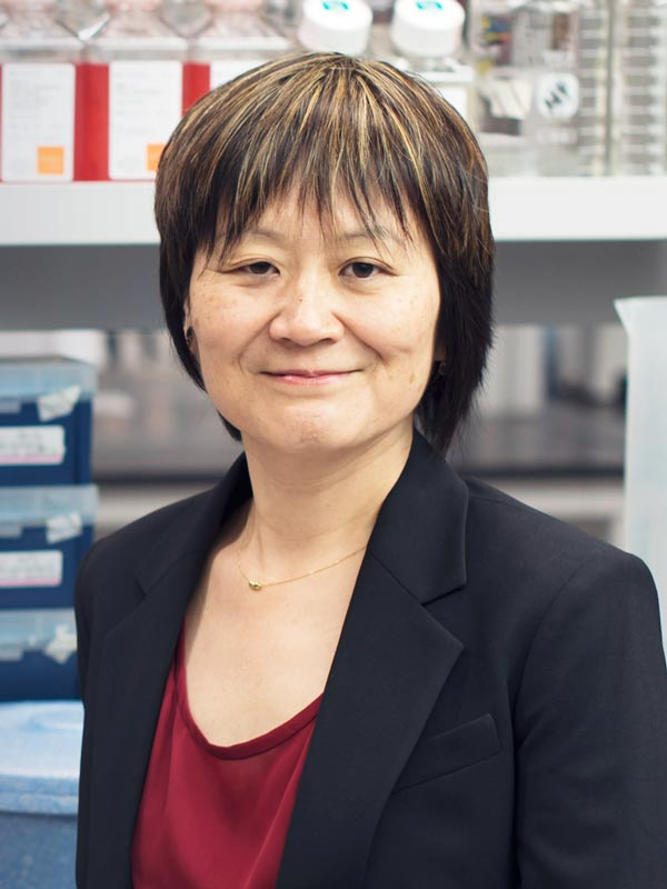 Faculty profile photo of                       Naoko  Tanese