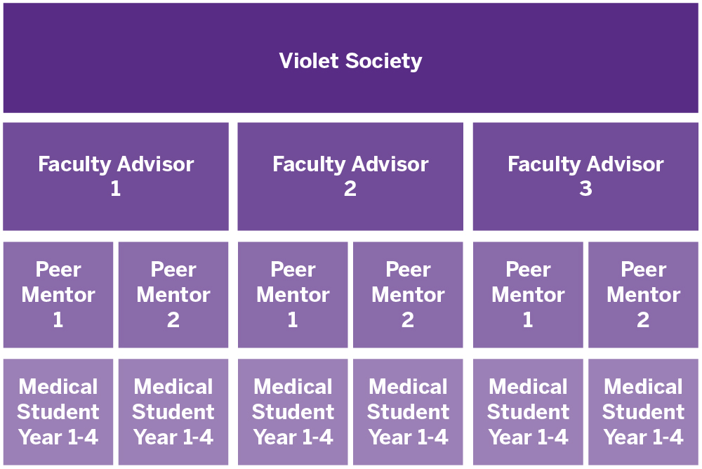 Faculty Advisor and Peer Mentor Groups