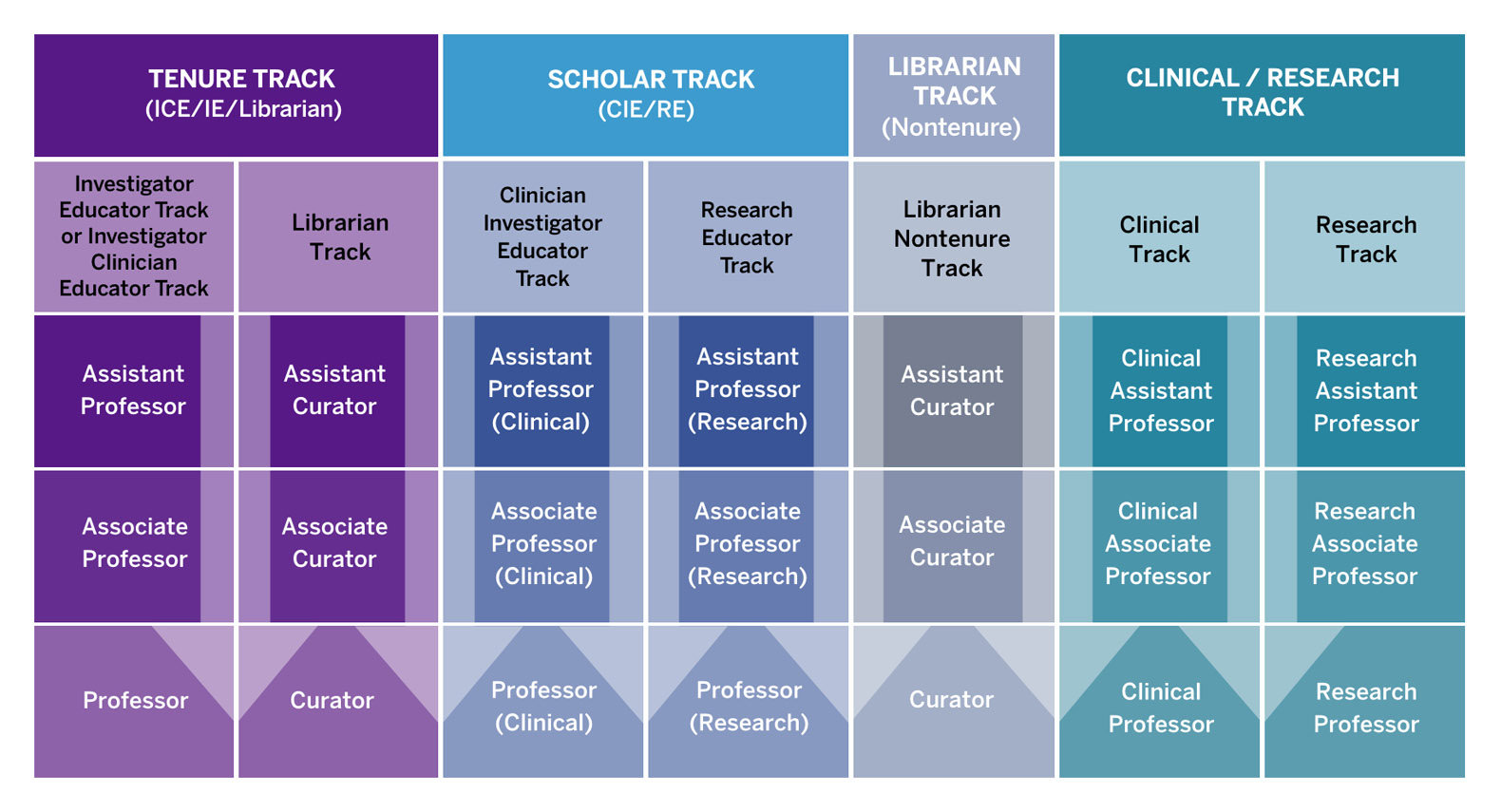 faculty-track-chart.jpg