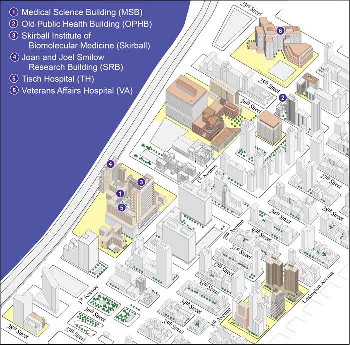 Nyu: Nyu Map Campus Map Nyu on