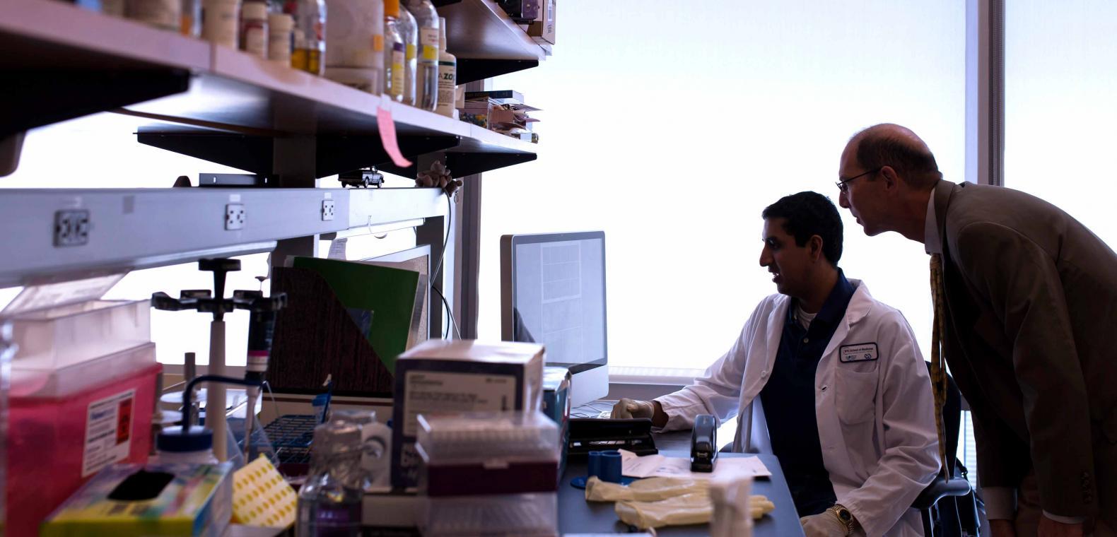 Research Highlights | NYU Langone Health