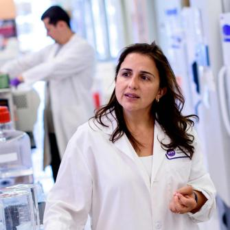 Dr. Eva Hernando-Monge Speaks with Colleagues in Lab