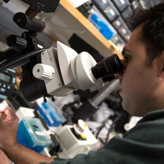 Researcher Looks into Microscope Eyepiece