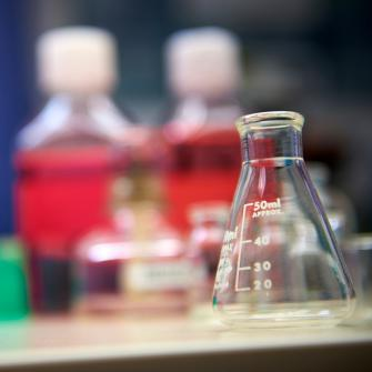Erlenmeyer Flask on Lab Bench