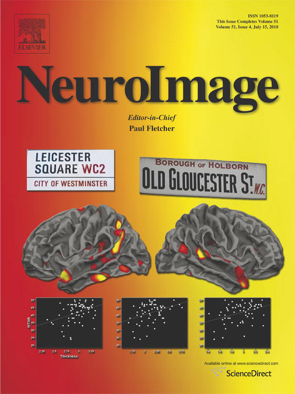 neuroimage_cover
